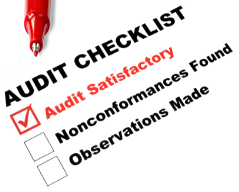 Audit Picture