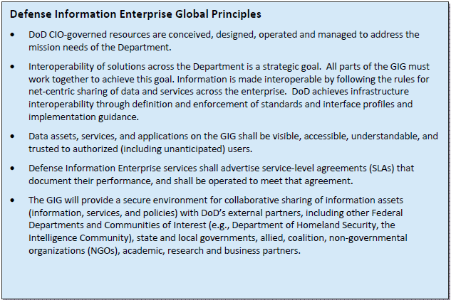 Defense Information Interprise Global Principals